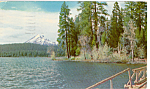 Click here to enlarge image and see more about item p24500: Lake of the Woods Oregon p24500