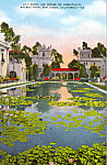 Click here to enlarge image and see more about item p24705: Lily Pond, Balboa Park,San Diego