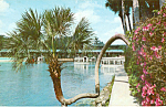 Click here to enlarge image and see more about item p25048: Lucky Palm and Glass Bottom Boats Silver Springs FL p25048