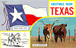Click here to enlarge image and see more about item p25059: Texas State Flag &  Texas Longhorns