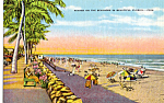 Click here to enlarge image and see more about item p25138: Winter on the Seashore Florida p25138