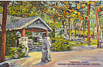 The Lodge Endless Caverns Virginia Postcard p25174