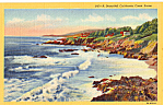 Beautiful California Coast Scene p25187