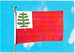 Click here to enlarge image and see more about item p2547: Pine Tree or Continental Flag Postcard p2547