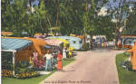 Click here to enlarge image and see more about item p25733: Life in a Trailer Park Florida p25733