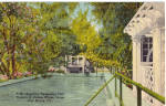 Click here to enlarge image and see more about item p25753: Swimming Pool Edison Winter Home, Ft Myers