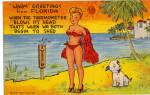 Click here to enlarge image and see more about item p25755: Warm Greetings From Florida Postcard p25755