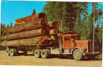 Click here to enlarge image and see more about item p26057: Logging Truck Paul Bunyan's Toothpicks