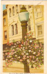 Click here to enlarge image and see more about item p26194: One of the Flower Stands Allentown  Pennsylvania p26194