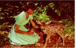 Girl with Fawn Postcard p26356