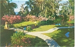 Cypress Gardens FL Tropical Flowers Postcard p2635