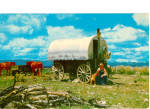 Click here to enlarge image and see more about item p26742: Cookie and His Chuck Wagon p26742