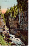 Click here to enlarge image and see more about item p26791: Ausable Chasm New York