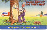 Click here to enlarge image and see more about item p26928: Gwan  Beat It This Tree s Sick Postcard p26928