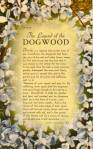 Click here to enlarge image and see more about item p27019: Legend Of The Dogwood p27019