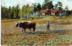 Click here to enlarge image and see more about item p27043: Farming in Sweden
