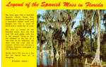 Click here to enlarge image and see more about item p27107: Legend Of The Spanish Moss in Florida p27107