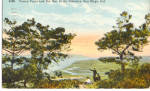 Click here to enlarge image and see more about item p27196: Torrey Pines and Del Mar in the Distance