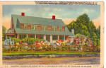 Click here to enlarge image and see more about item p27592: Mountain Home with Display of Dahlias in Bloom