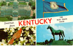 Click here to enlarge image and see more about item p27871: Kentucky State Bird, Cardinal