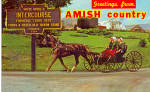 Traditional Amish Horse and Buggy p27900
