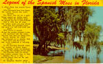 Click here to enlarge image and see more about item p28063: Legend of the Spanish Moss