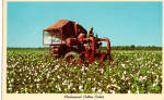 Click here to enlarge image and see more about item p28154: Mechanical Cotton Picker