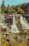 Blackwater Falls Davis West Virginia Postcard p28271