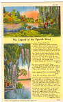 Click here to enlarge image and see more about item p28424: The Legend of The Spanish Moss
