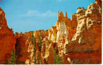 Click here to enlarge image and see more about item p28498: The Camel Wiseman Bryce Canyon National Park UT p28498