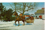 Amish family in One Horse Open Sleigh p28581