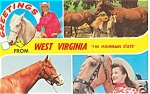 West Virginia Mountain State Postcard