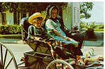 Amish Children in  Buggy Postcard p28634