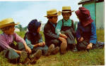 Group of Amish Boys and Girls during School Recess p28713