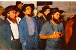 Amish Men at Horse Auction p28731