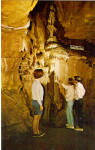 Click here to enlarge image and see more about item p28805: The Purity Cascade in Lincoln Caverns p28805