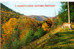 Autumn in PA Mountains Whitetail Buck Postcard p28952