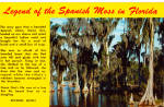Click here to enlarge image and see more about item p28990: Legend of the Spanish Moss in Florida