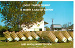 Bales of Cotton just finished by Cotton Gin Postcard p28995