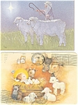 Christmas Postcards with Sheep Lot
