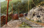 Click here to enlarge image and see more about item p29249: Trolley on Neversink Mountain Reading  PA p29249