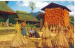 Click here to enlarge image and see more about item p29457: Oshima Village Japan, Pan Am Airways Postcard