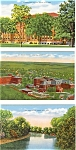 Click here to enlarge image and see more about item p2949: Sioux City Iowa  Postcard Lot 3