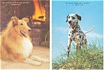 Click here to enlarge image and see more about item p2956: Inspirational Dog Postcard Lot 2