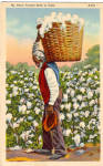 Click here to enlarge image and see more about item p29638: Older Man Carrying Basket of Cotton Black American p29638