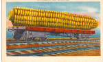 Ear of Corn on a Railroad Car Postcard p29847