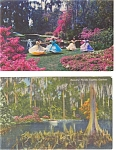 Click here to enlarge image and see more about item p2985: Cypress Gardens FL Postcard p2985 Lot of 2