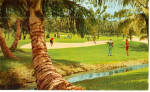 Click here to enlarge image and see more about item p29963: Dorado Beach Golf Course  Dorado Puerto Rico p29963