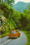 Click here to enlarge image and see more about item p30027: El Yunque Rain Forest, Puerto Rico