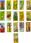 Click here to enlarge image and see more about item p30112: Red Rose Tea TreesTrading Cards Partial Set